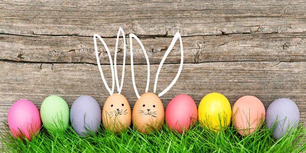 Pâques 2019 : Chasse aux œufs à la ferme des autruches!